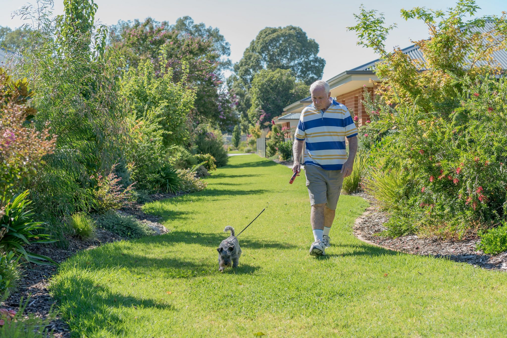 Explore the surrounds or enjoy a quiet walk around - Murray Vale Village - Lavington-00067